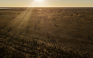 澳洲旱情可能会导致食品价格上涨