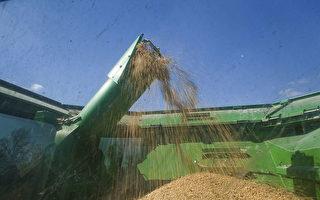 美媒:美中貿談在農產品和降稅幅度上分歧大