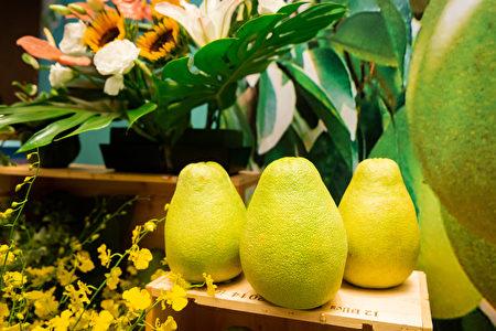 """《吕氏春秋》一书最早提到对柚子的赞美:""""果之美味,江浦之橘,云梦之柚。"""""""