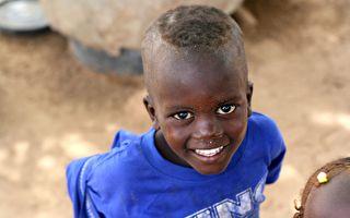 首座太陽能海水淡化廠 讓非洲人不用跟動物搶水
