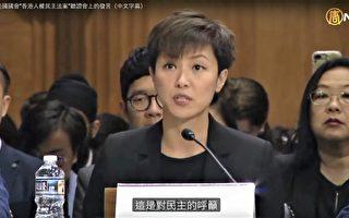 何韻詩美國國會香港人權法聽證會證詞