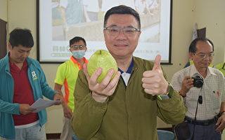 民進黨主席卓榮泰:台灣芭樂可以換美金了