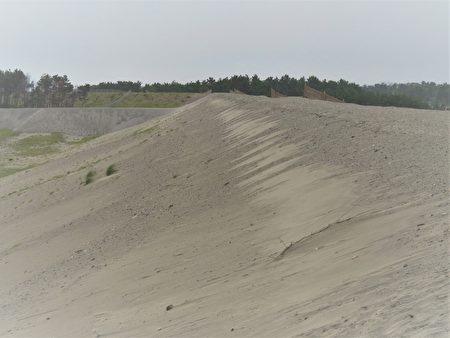 中田島沙坵的淤砂,據說是附近天龍川沖積下來的。
