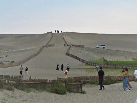位於濱松的中田島砂丘是日本三大砂丘之一。