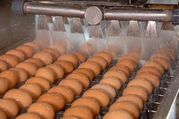 购买洗选蛋应选择冷藏保存的类型,才能避免病菌污染。(Shutterstock)