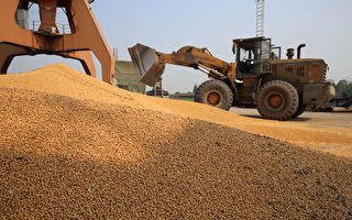 新一輪關稅排除後 中國買家重返美大豆市場