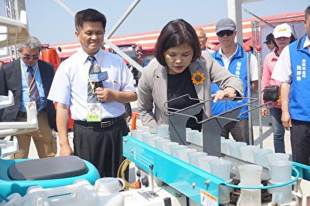 县长张丽善参观自动移植机,只要把菜苗放在塑胶杯里,机器就可以快速的把菜苗种在土里,可省大量人力。