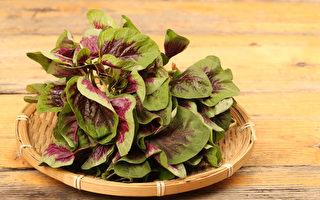 哪些補鐵食物含鐵量高、易吸收?如何高效補鐵?(Shutterstock)