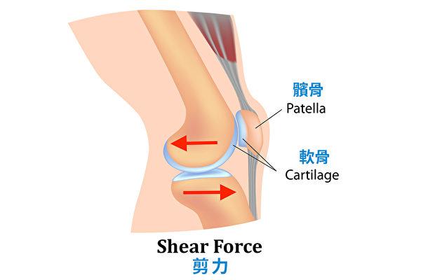 深蹲时膝盖收到的剪力。(采实文化提供/大纪元译制)