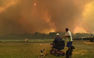 澳洲大火肆虐 数十起无法控制 悉尼告急