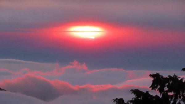 【視頻】阿里山罕見美景 夕陽如雞蛋黃
