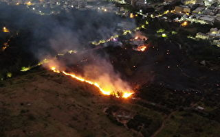 大肚山火烧山迭起  议员与消防局促辟防火带