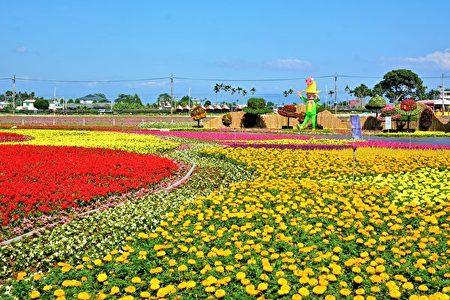 50公頃花海山城綻放,開幕首周假日遊客爆棚。