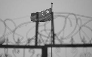 創新低 政大民調:台灣希望盡快統一者僅0.7%