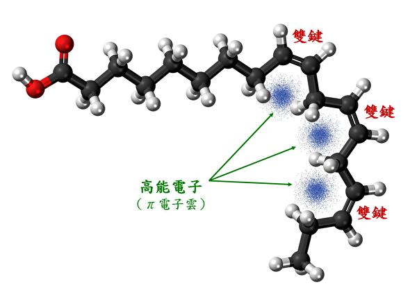 亞麻酸是必需脂肪酸之一,具3個雙鍵,雙鍵處富含高能電子。亞麻酸也是俗稱的omega 3一員。(pixabay/大紀元製圖)