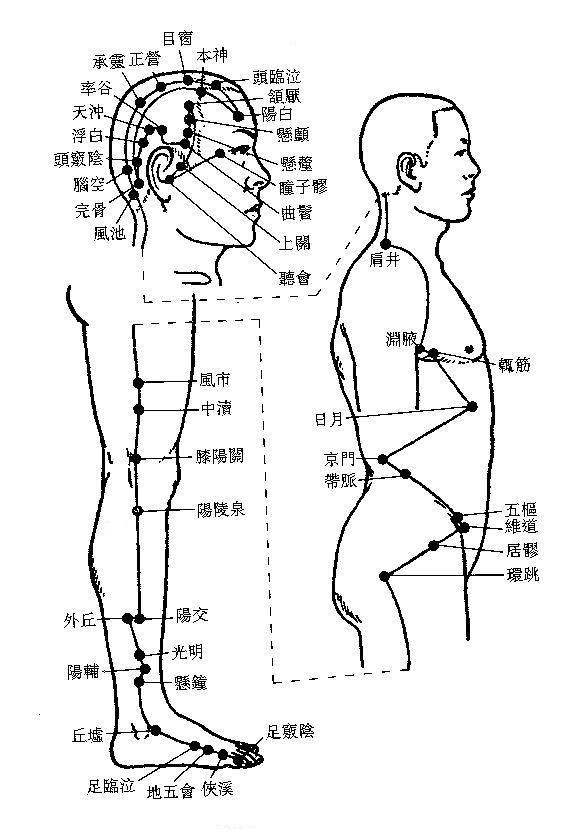 中醫調理偏頭痛,從手足少陽經(三焦、膽)與手足厥陰經(心包、肝)著手。(黃雪子醫師提供)
