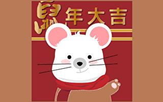 鼠年話鼠:善鼠、報恩鼠