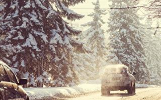 加拿大卑省南部降雪警报内陆高地