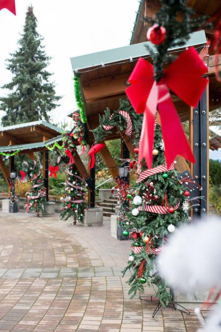 11月23日至2020年1月12日,哈里森溫泉美麗的冬季——湖畔燈光節登場。