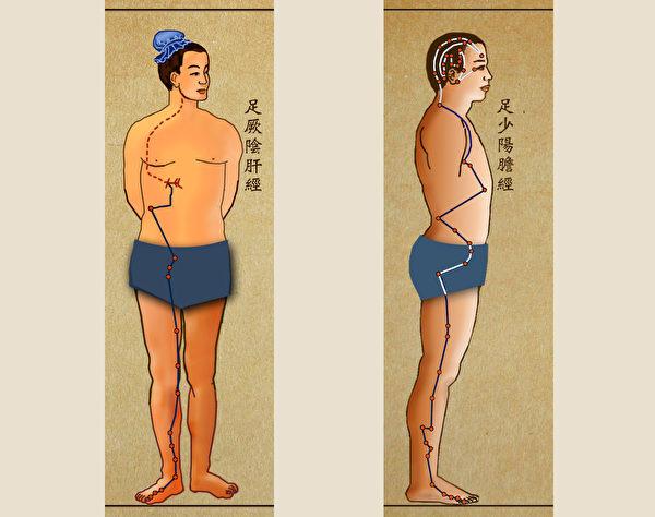 每日敲打肝经与胆经各100~200下,有助于改善肝胆功能、促进代谢。(谈古论今话中医提供)