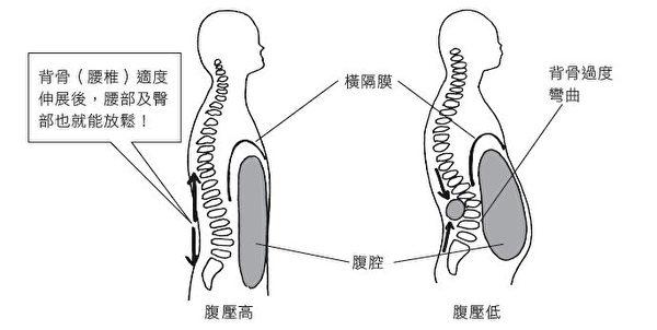 腹肌鬆弛,腹壓就會變低而導致腰痛。(幸福文化提供)