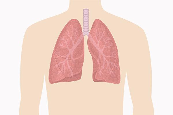 很多人是在健康检查后,才发现肺功能异常。哪些方法可以增强肺功能?(Shutterstock)