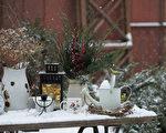 冬季園藝8技巧 幫助植物應對寒冬