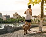 快走或遛狗30分鐘,有助于男性降低血糖和食欲,進一步減輕糖尿病風險。(Shutterstock)