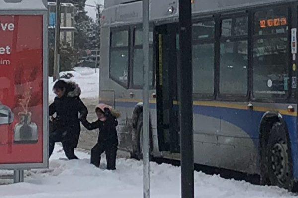 1月15日,大溫部分地區的積雪達到40厘米導致公交服務延誤或取消