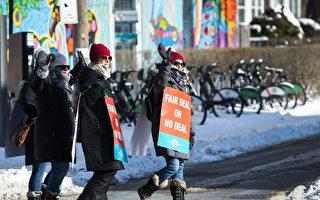 行動升級 安省小學教師2月6日全體罷工