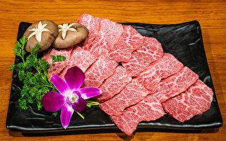 Hanam BBQ平价享受顶级烤肉