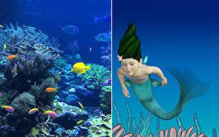 小美人魚的寶物!濟州島夢幻「貝殼水晶球」