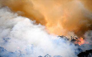 橄榄球星谓 澳洲人在山火危机前就应信神