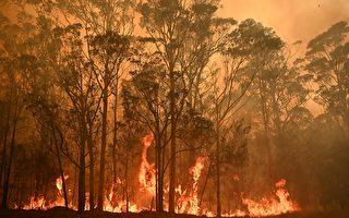 """澳洲野火肆虐 浓烟中出现""""恶魔的脸"""""""