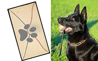 工程師想跟鄰居的狗交朋友 帥狗回信還押上腳印