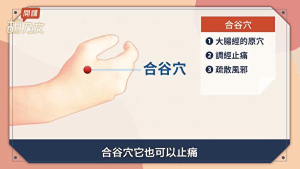 改善月经经痛的穴位:合谷穴。(胡乃文开讲提供)