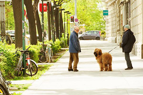 一份歷時60年的研究顯示,有特定性格特質的年輕人,老來不容易患失智症。(Shutterstock)