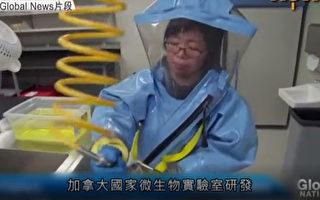 邱香果涉向中国转移知识产权 或已离开加拿大
