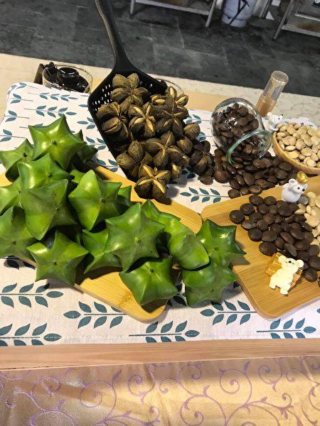 星形蒴果含有种子四到七个,每个棱角内含有一粒种子,外型可爱。