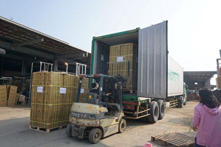 台灣薑首度外銷美國,第一批17,000斤21日裝櫃。