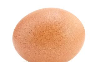 鸡蛋上钻上万个小洞 土耳其男子创世界纪录