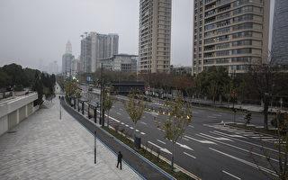 """""""武汉像一座死城""""上千人医院排队等试纸"""