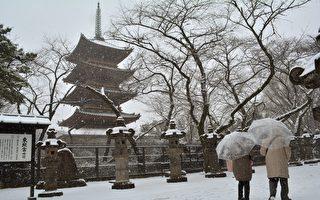 組圖:日本京都寺院雪景 美不勝收