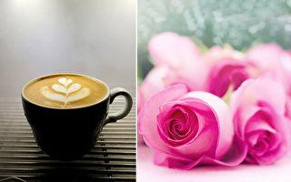 喝咖啡的视觉享受 咖啡师彩绘拉花萌翻26万粉丝