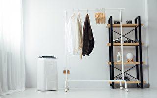 节能除湿机推荐:智能自动除湿,一回家就享受舒适干爽空间