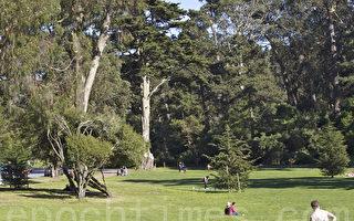 若不遵居家防疫令 舊金山公園亦將關閉
