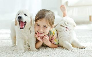 孩子飼養寵物好處多 父母引導是關鍵