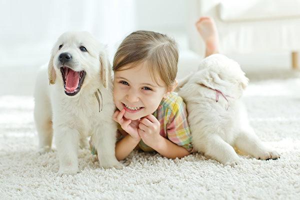 孩子饲养宠物好处多 父母引导是关键