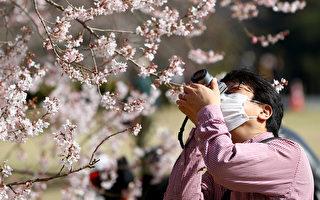 组图:疫情下 东京上野公园涌现赏樱人潮