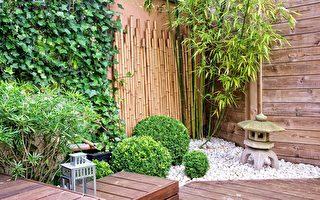 """只要1坪的""""坪庭"""" 创造出日式庭园沈静心灵的角落"""